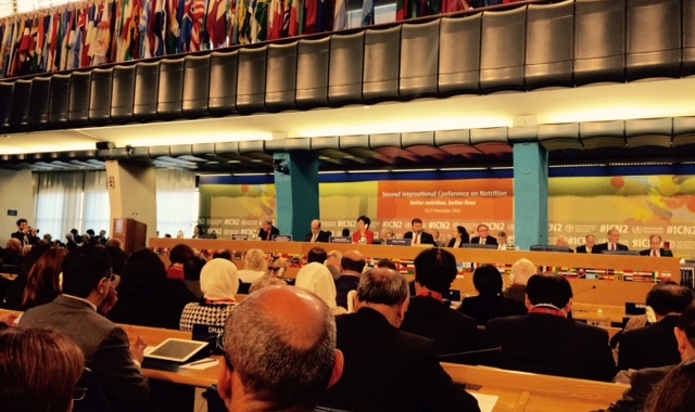 Deuxième Conférence internationale sur la nutrition (CIN 2)