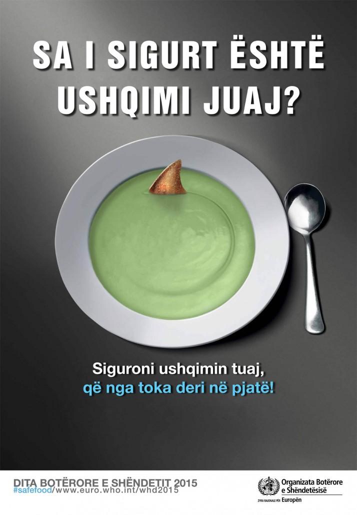 Posteri i dites shqip 1
