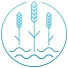 voda 5